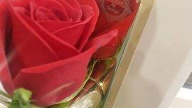 Valentines Day Derby